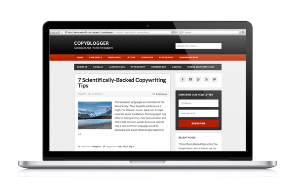 http://www.wpstuffs.com/wp-content/uploads/2013/06/copyblogger-child-theme-mockup1-wpcf_600x384.png