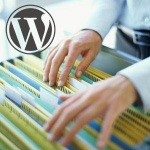 wordpress-file-revision