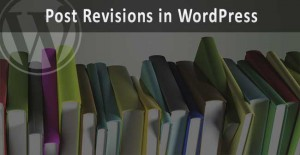 post-revisions-wp