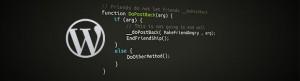 Wordpress-unwanted-code
