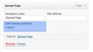 Adding Custom CSS Class name