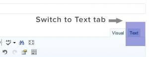 switch-to-text-wordpress